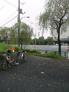 雨の合間の大井埠頭